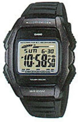 Casio WL-500-1A