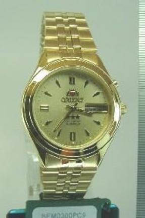 Orient BEM0300PC