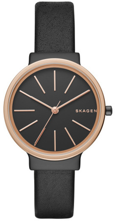 Skagen SKW2480