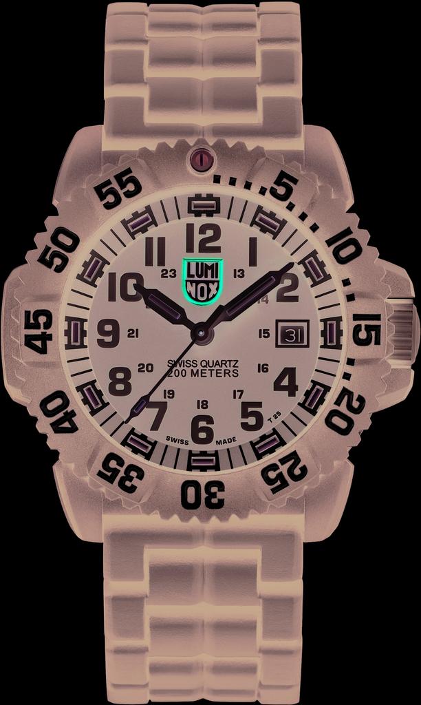 Мужские часы Luminox XS.3052